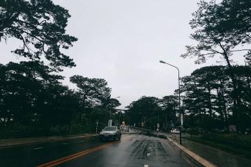 Đà Lạt mưa ký ức