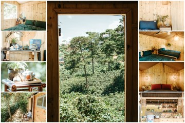 Dalat Memories Homestay - Khu nhà gỗ nằm nghe nắng mưa giữa đồi thông Đà Lạt