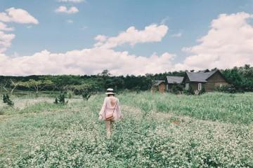 """Sống ảo chất lừ tại các farm có view """"thần thánh"""" tại Đà Lạt"""