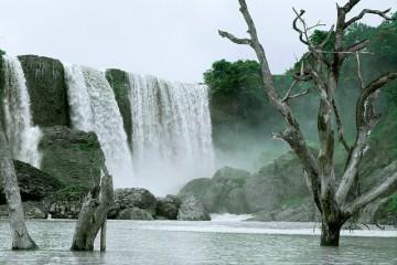 Thác Bảo Đại Đà Lạt - Nét đẹp hoang sơ của núi rừng Tây Nguyên