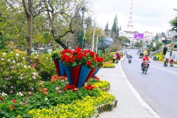 Festival hoa Đà Lạt 2019 có gì?