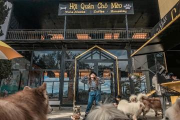 Top 5 quán cà phê thú cưng Đà Lạt được yêu thích hiện nay