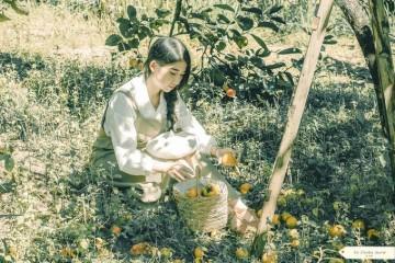 Những điều nhất định phải trải nghiệm nếu có dịp ghé thăm Đà Lạt mùa hồng chín