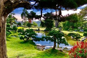 Khu du lịch Rừng lá phong Đà Lạt - Vẻ đẹp ấn tượng của xứ sở ngàn hoa