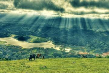 Tour Đà Lạt Langbiang Thung Lũng Vàng