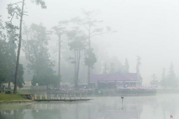 Bí kíp du lịch Đà Lạt mùa mưa