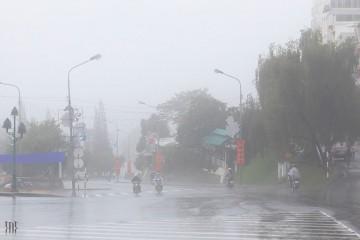 Những điều nên trải nghiệm nếu lỡ gặp gỡ Đà Lạt một ngày mưa