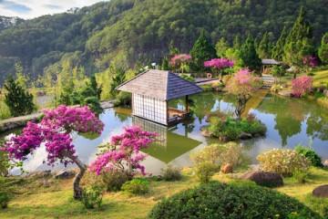 Ngẩn ngơ trước vẻ đẹp như tranh vẽ của QUE Garden - Tiểu Nhật Bản giữa lòng Đà Lạt