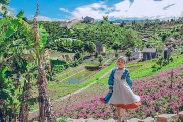 Top những vườn hoa làm mưa làm gió bốn mùa ở Đà Lạt