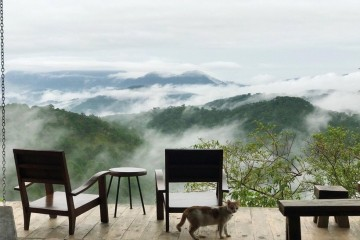 Top 4 quán cà phê view cực xịn ở khu dã chiến Đà Lạt