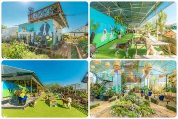 Vườn của Cún - Puppy's Garden nơi check in cùng các bé cún siêu yêu tại Đà Lạt