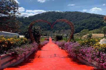 Vườn thượng uyển bay - khu du lịch ngàn hoa giữa lòng phố núi Đà Lạt