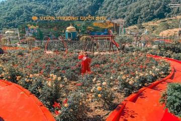 Ghé thăm 5 địa điểm du lịch ấn tượng của Đà Lạt năm 2020