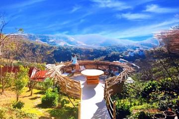 Top 10 homestay không thể bỏ qua ở Đà Lạt