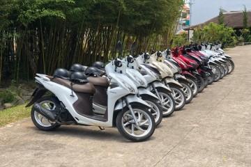 Vì sao nên thuê xe máy để du lịch Đà Lạt?